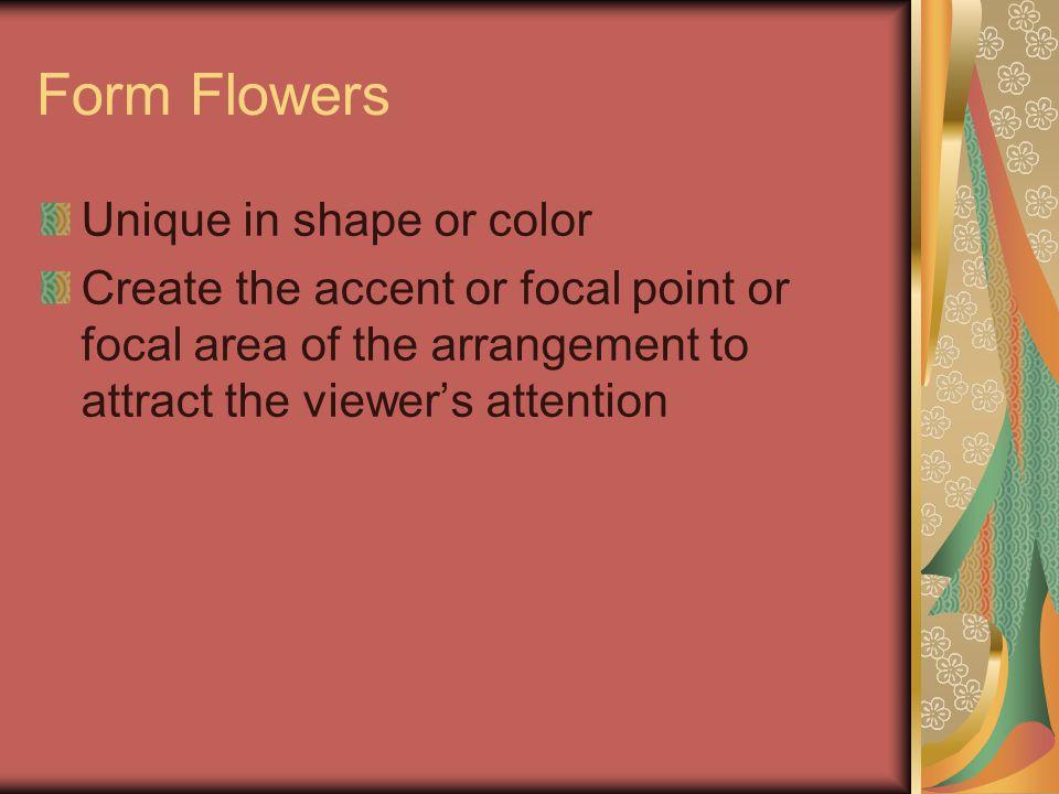 Alpinia purpurata – Red Ginger