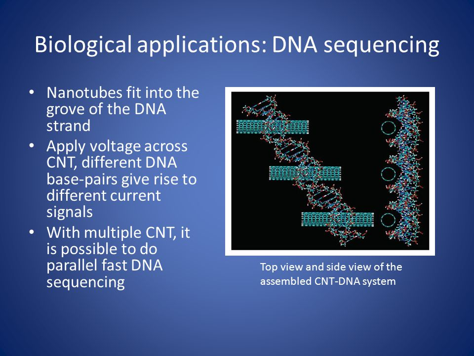 Biological applications: DNA sequencing Nanotubes fit into the grove of the DNA strand Apply voltage across CNT, different DNA base-pairs give rise to