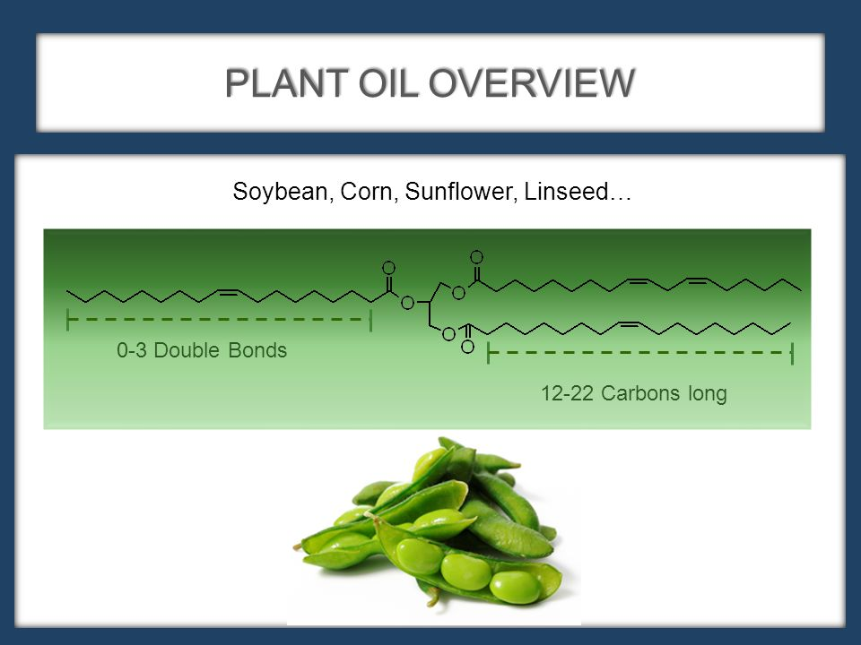 PLANT OIL OVERVIEW 12-22 Carbons long 0-3 Double Bonds Soybean, Corn, Sunflower, Linseed…