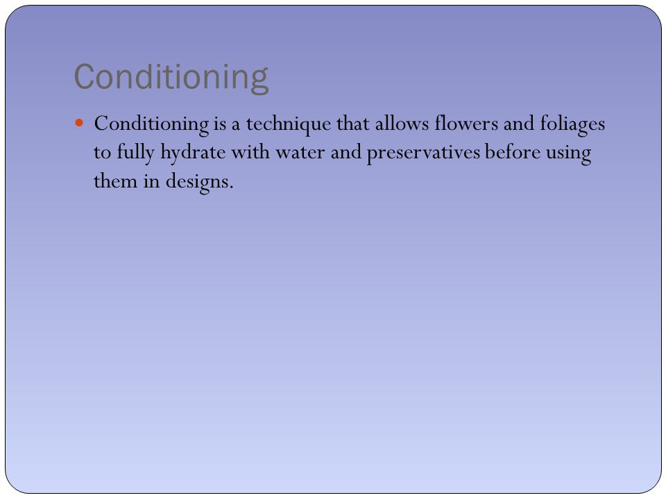Conditioning Conditioning is a technique that allows flowers and foliages to fully hydrate with water and preservatives before using them in designs.