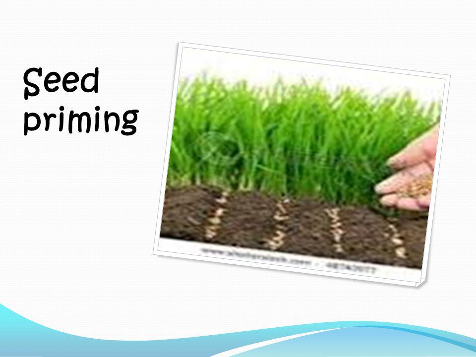 Seed priming