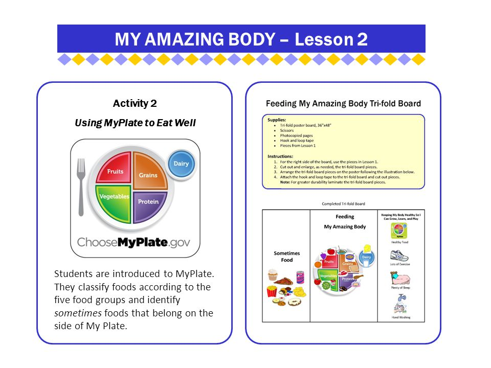 MY AMAZING BODY – Lesson 2 Activity 2 Using MyPlate to Eat Well Students are introduced to MyPlate.