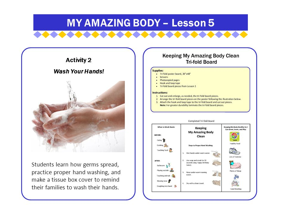 MY AMAZING BODY – Lesson 5 Activity 2 Wash Your Hands.
