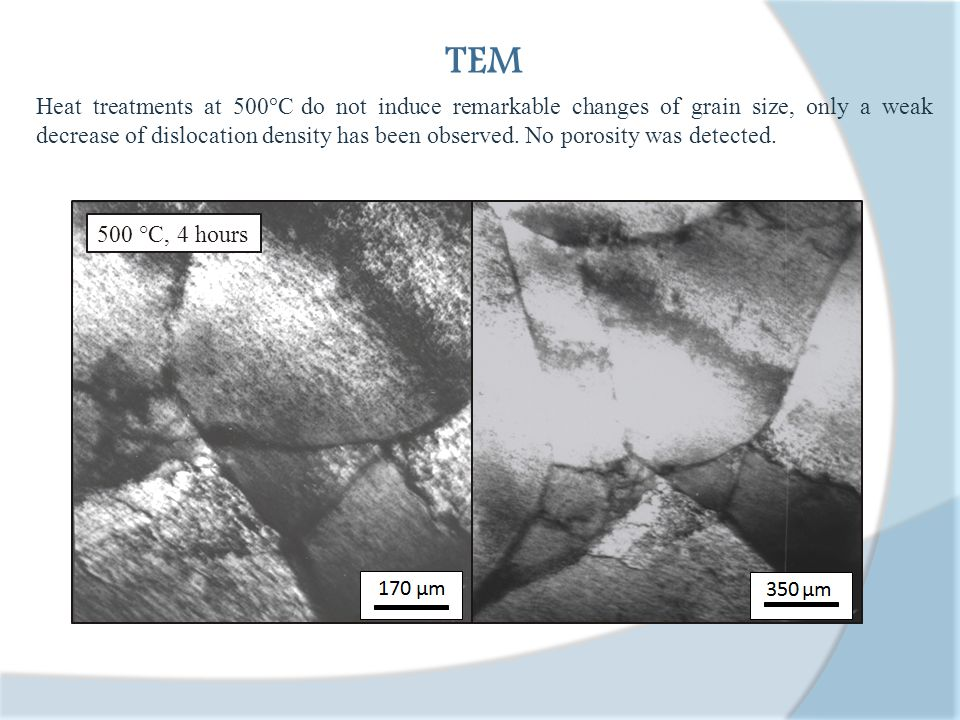1 h 800°C 2 h 800°C 5 h 800°C10 h 800°C Light microscopy