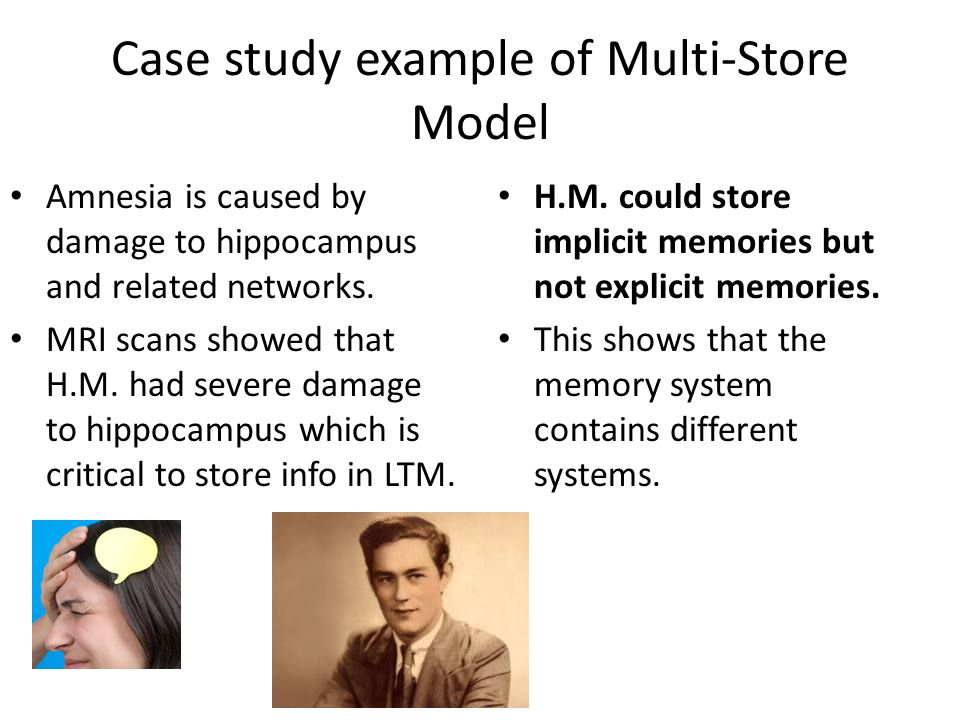 Case study example of Multi-Store Model Amnesia is caused by damage to hippocampus and related networks. MRI scans showed that H.M. had severe damage