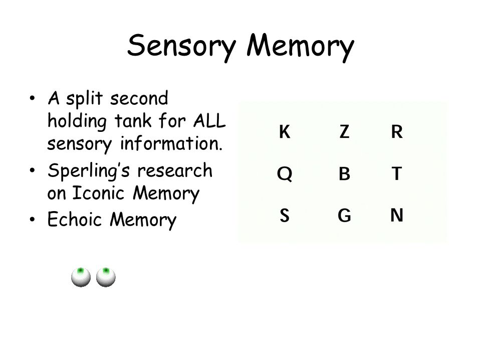 Sensory Memory A split second holding tank for ALL sensory information. Sperling's research on Iconic Memory Echoic Memory