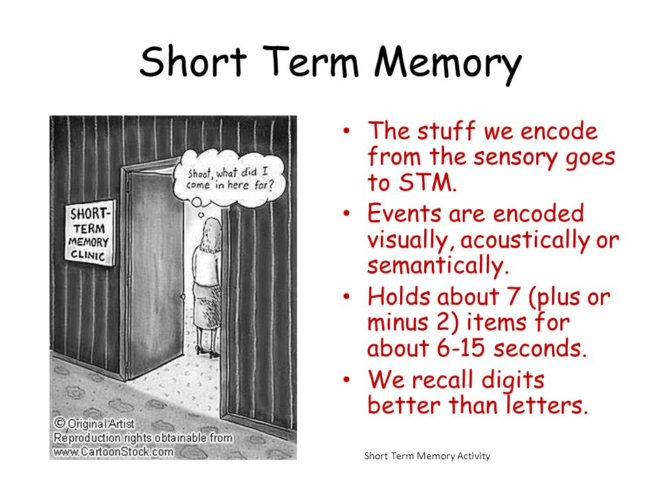 Short Term Memory The stuff we encode from the sensory goes to STM. Events are encoded visually, acoustically or semantically. Holds about 7 (plus or