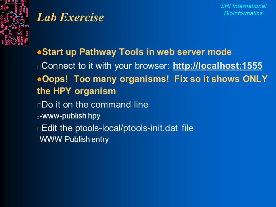 SRI International Bioinformatics Lab Exercise Start up Pathway Tools in web server mode Connect to it with your browser: http://localhost:1555http://localhost:1555 Oops.