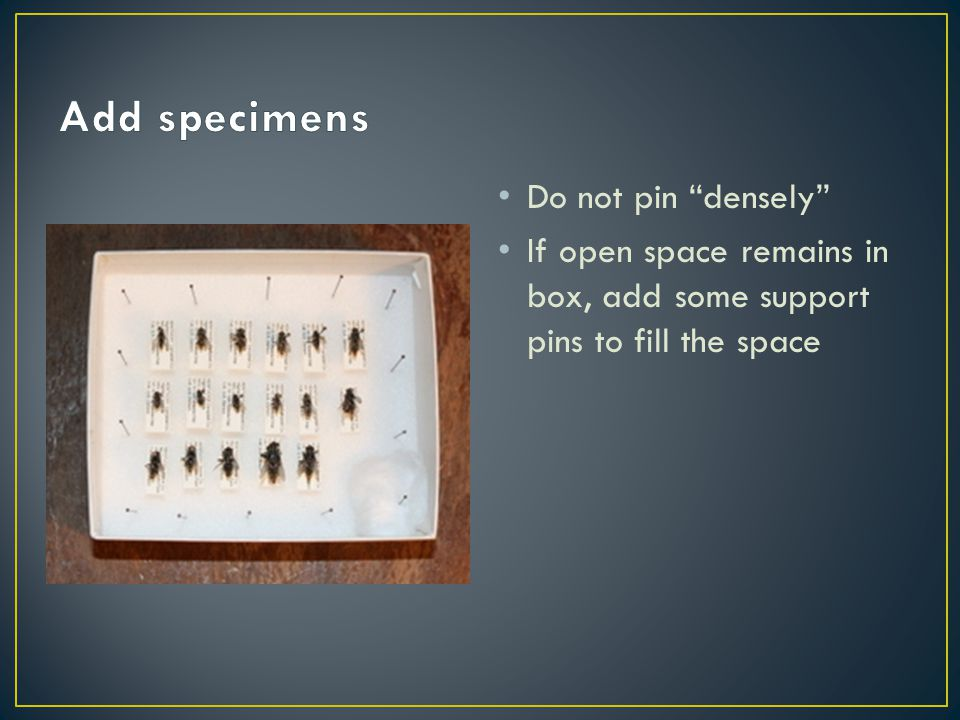 Do not pin densely If open space remains in box, add some support pins to fill the space