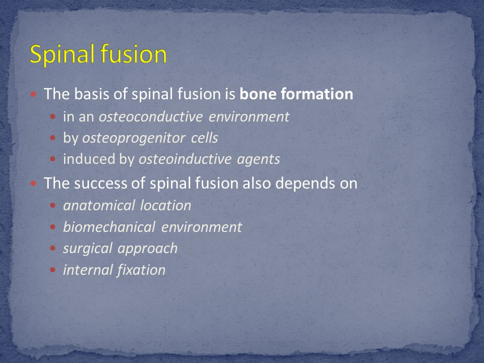 The basis of spinal fusion is bone formation in an osteoconductive environment by osteoprogenitor cells induced by osteoinductive agents The success of spinal fusion also depends on anatomical location biomechanical environment surgical approach internal fixation