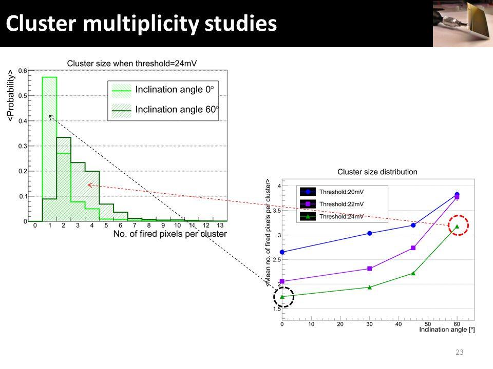 Cluster multiplicity studies 23