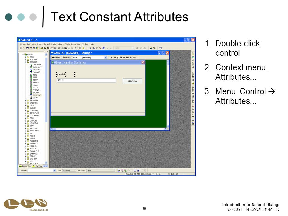 30 Introduction to Natural Dialogs © 2005 LEN C ONSULTING LLC Text Constant Attributes 1.Double-click control 2.Context menu: Attributes...