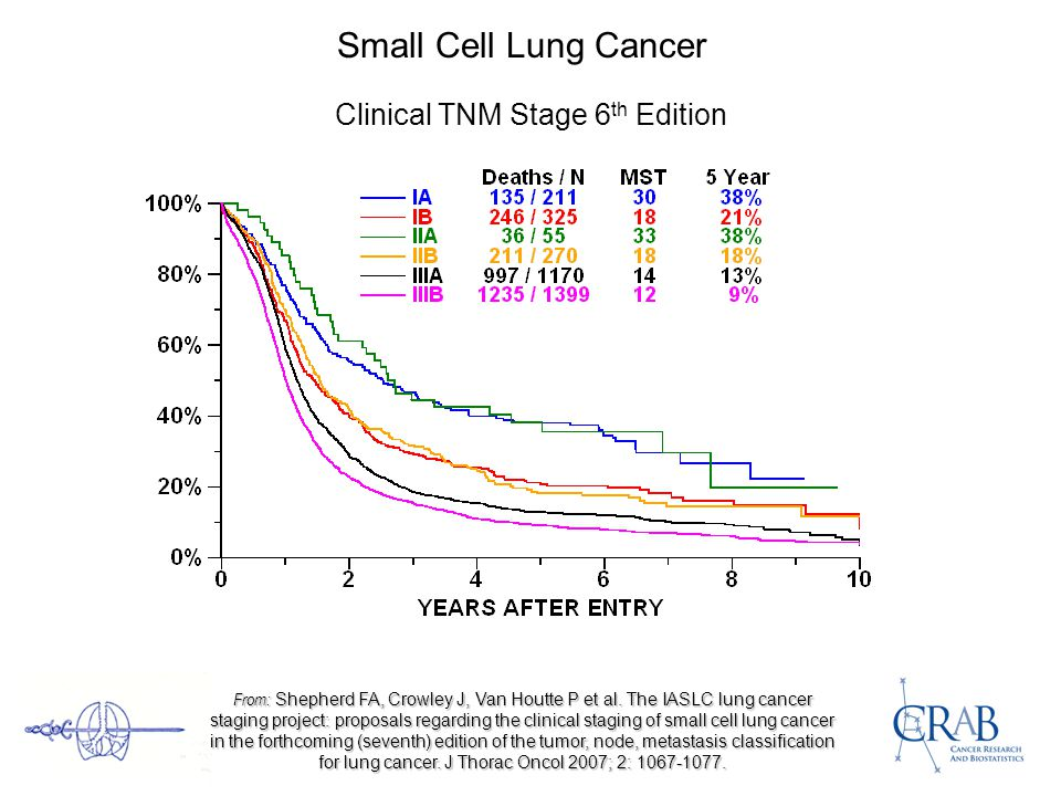 Small Cell Lung Cancer Clinical TNM Stage 6 th Edition From: Shepherd FA, Crowley J, Van Houtte P et al.