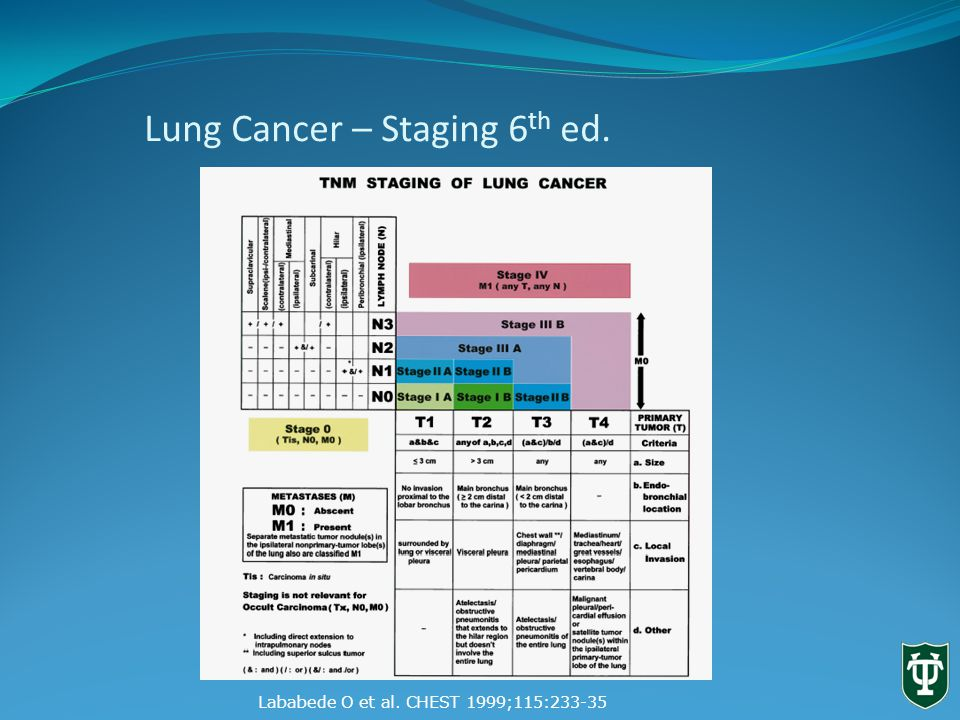 Lung Cancer – Staging 6 th ed. Lababede O et al. CHEST 1999;115:233-35