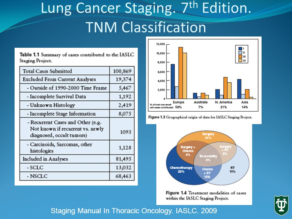 Lung Cancer Staging. 7 th Edition. T3 Staging Manual In Thoracic Oncology IASLC. 2009
