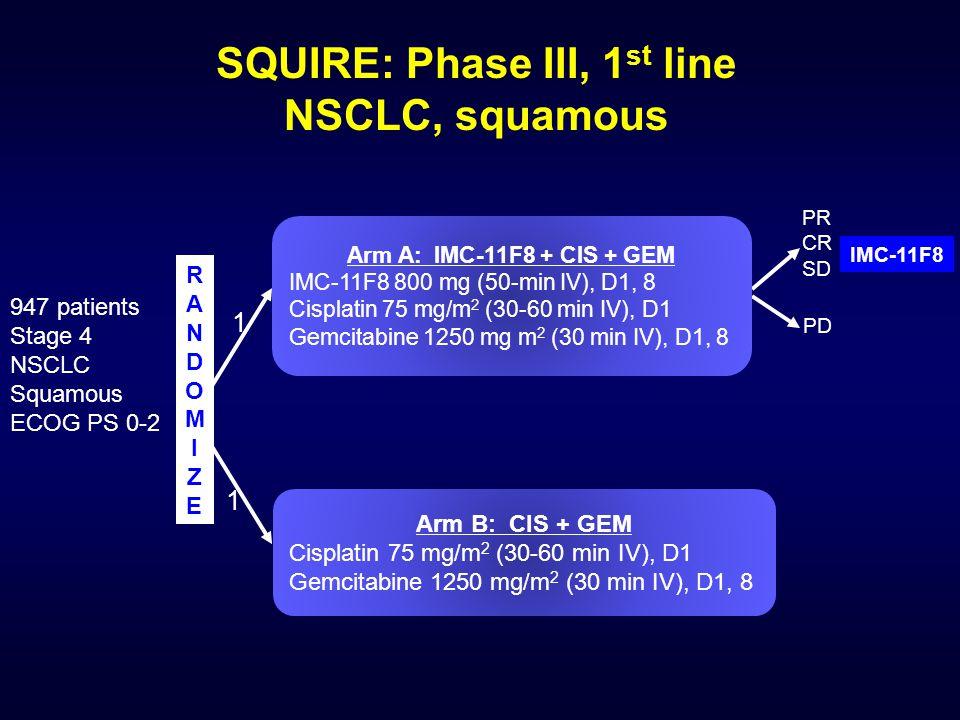 RANDOMIZERANDOMIZE IMC-11F8 Arm B: CIS + GEM Cisplatin 75 mg/m 2 (30-60 min IV), D1 Gemcitabine 1250 mg/m 2 (30 min IV), D1, 8 Arm A: IMC-11F8 + CIS + GEM IMC-11F8 800 mg (50-min IV), D1, 8 Cisplatin 75 mg/m 2 (30-60 min IV), D1 Gemcitabine 1250 mg m 2 (30 min IV), D1, 8 SQUIRE: Phase III, 1 st line NSCLC, squamous 947 patients Stage 4 NSCLC Squamous ECOG PS 0-2 PR CR SD PD 1 1
