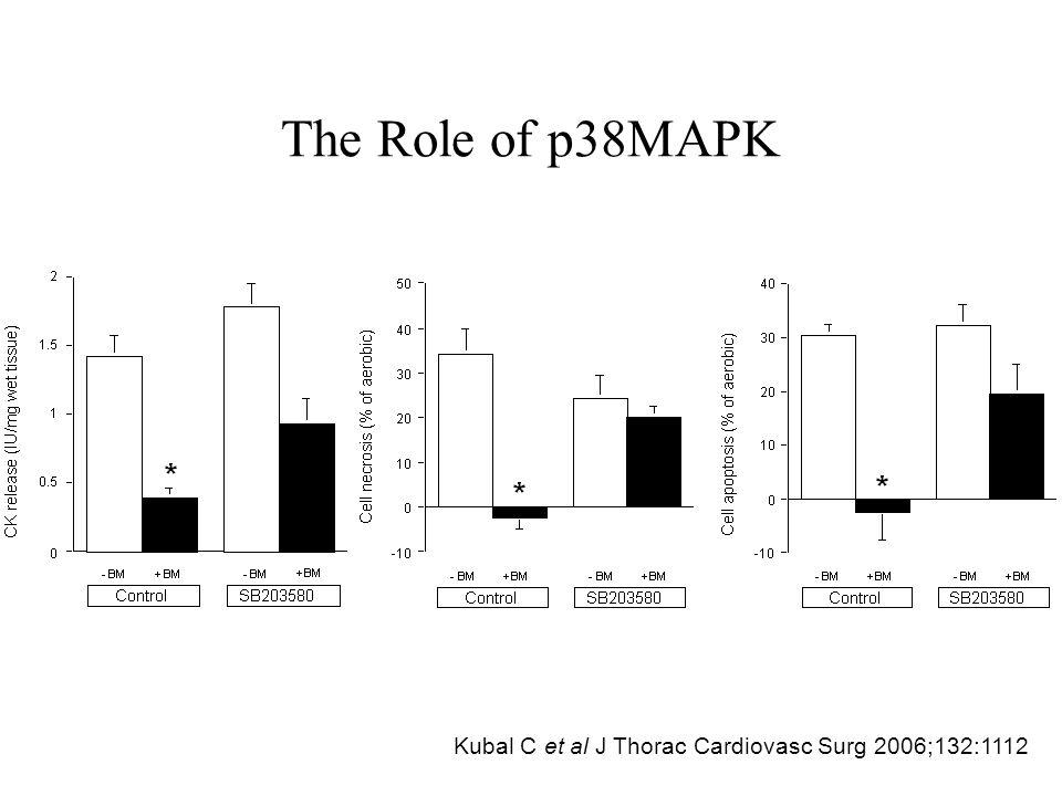 The Role of p38MAPK Kubal C et al J Thorac Cardiovasc Surg 2006;132:1112