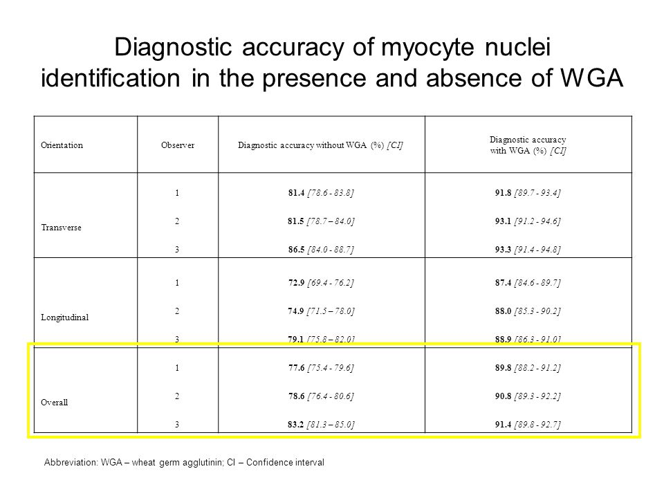 Diagnostic accuracy of myocyte nuclei identification in the presence and absence of WGA Abbreviation: WGA – wheat germ agglutinin; CI – Confidence interval OrientationObserverDiagnostic accuracy without WGA (%) [CI] Diagnostic accuracy with WGA (%) [CI] Transverse 181.4 [78.6 - 83.8]91.8 [89.7 - 93.4] 281.5 [78.7 – 84.0]93.1 [91.2 - 94.6] 386.5 [84.0 - 88.7]93.3 [91.4 - 94.8] Longitudinal 172.9 [69.4 - 76.2]87.4 [84.6 - 89.7] 274.9 [71.5 – 78.0]88.0 [85.3 - 90.2] 379.1 [75.8 – 82.0]88.9 [86.3 - 91.0] Overall 177.6 [75.4 - 79.6]89.8 [88.2 - 91.2] 278.6 [76.4 - 80.6]90.8 [89.3 - 92.2] 383.2 [81.3 – 85.0]91.4 [89.8 - 92.7]