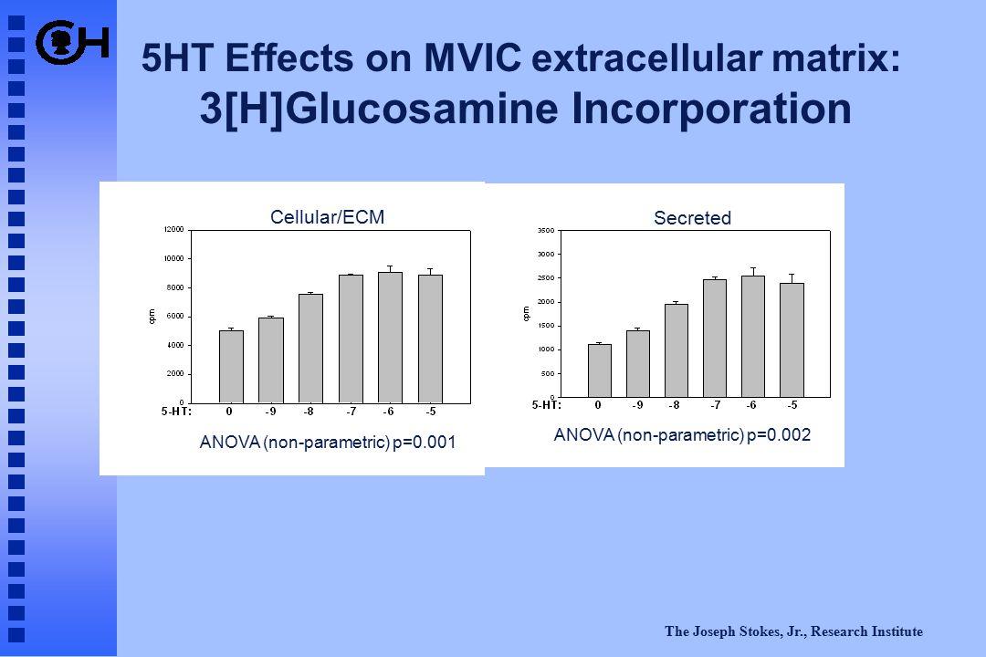The Joseph Stokes, Jr., Research Institute ANOVA (non-parametric) p=0.001 ANOVA (non-parametric) p=0.002 5HT Effects on MVIC extracellular matrix: 3[H]Glucosamine Incorporation Secreted Cellular/ECM
