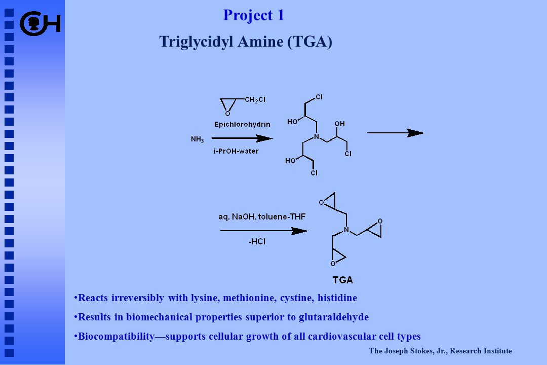 The Joseph Stokes, Jr., Research Institute Triglycidyl Amine (TGA) Project 1 Reacts irreversibly with lysine, methionine, cystine, histidine Results in biomechanical properties superior to glutaraldehyde Biocompatibility—supports cellular growth of all cardiovascular cell types