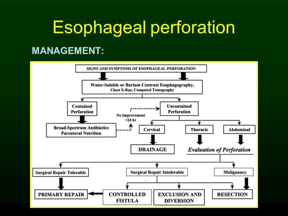 Esophageal perforation MANAGEMENT: