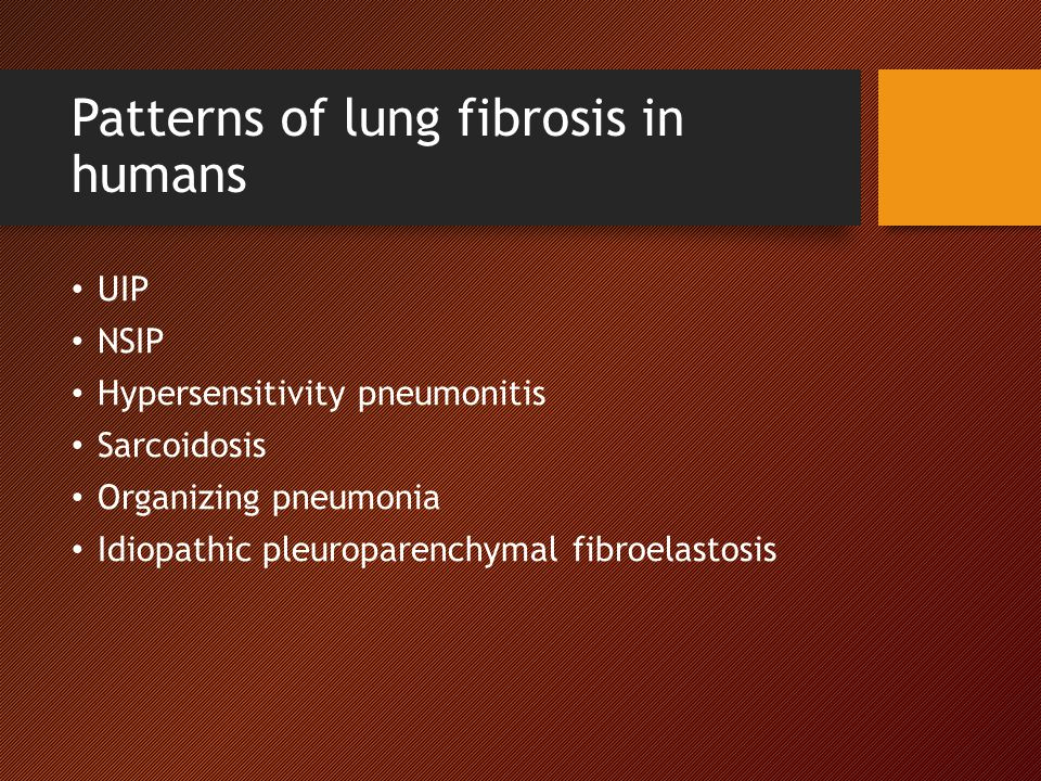 Patterns of lung fibrosis in humans UIP NSIP Hypersensitivity pneumonitis Sarcoidosis Organizing pneumonia Idiopathic pleuroparenchymal fibroelastosis
