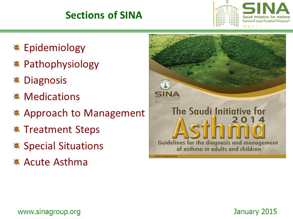 www.sinagroup.org January 2015 Sections of SINA Epidemiology Pathophysiology Diagnosis Medications Approach to Management Treatment Steps Special Situ