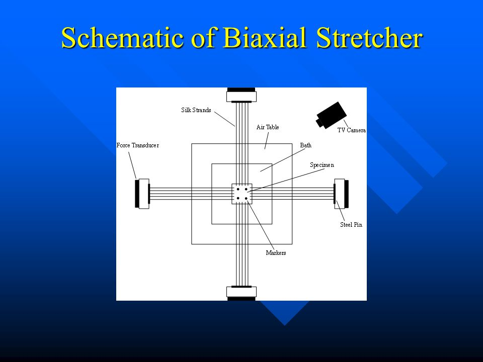 Schematic of Biaxial Stretcher