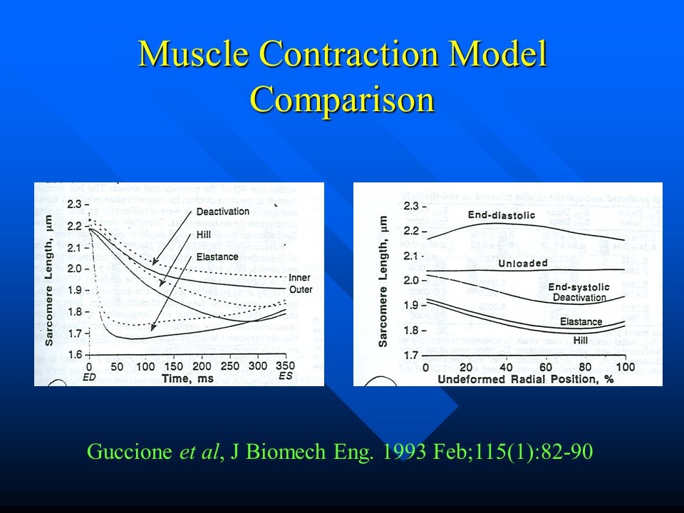 Muscle Contraction Model Comparison Guccione et al, J Biomech Eng. 1993 Feb;115(1):82-90