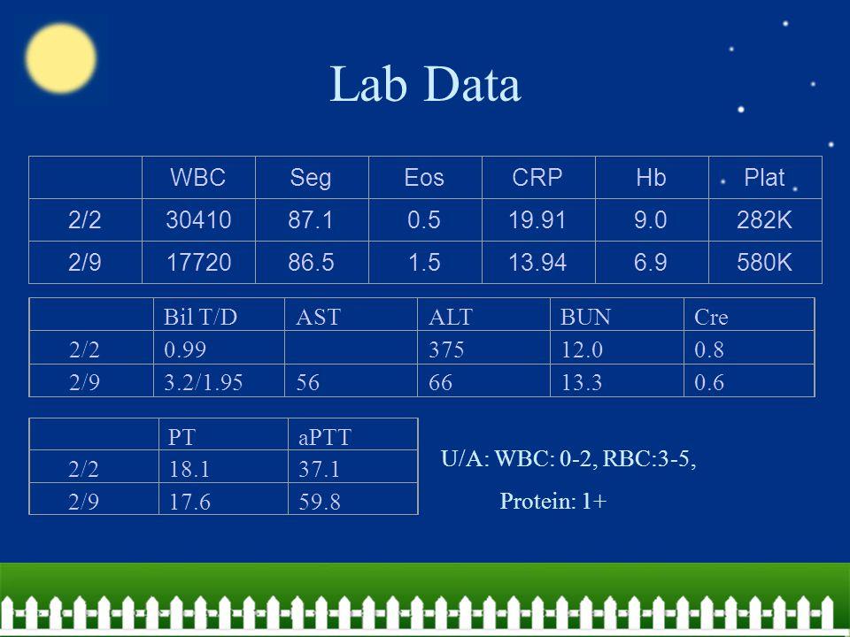 Lab Data WBCSegEosCRPHbPlat 2/23041087.10.519.919.0282K 2/91772086.51.513.946.9580K Bil T/DASTALTBUNCre 2/20.99 37512.00.8 2/93.2/1.95566613.30.6 PTaPTT 2/2 18.137.1 2/917.659.8 U/A: WBC: 0-2, RBC:3-5, Protein: 1+