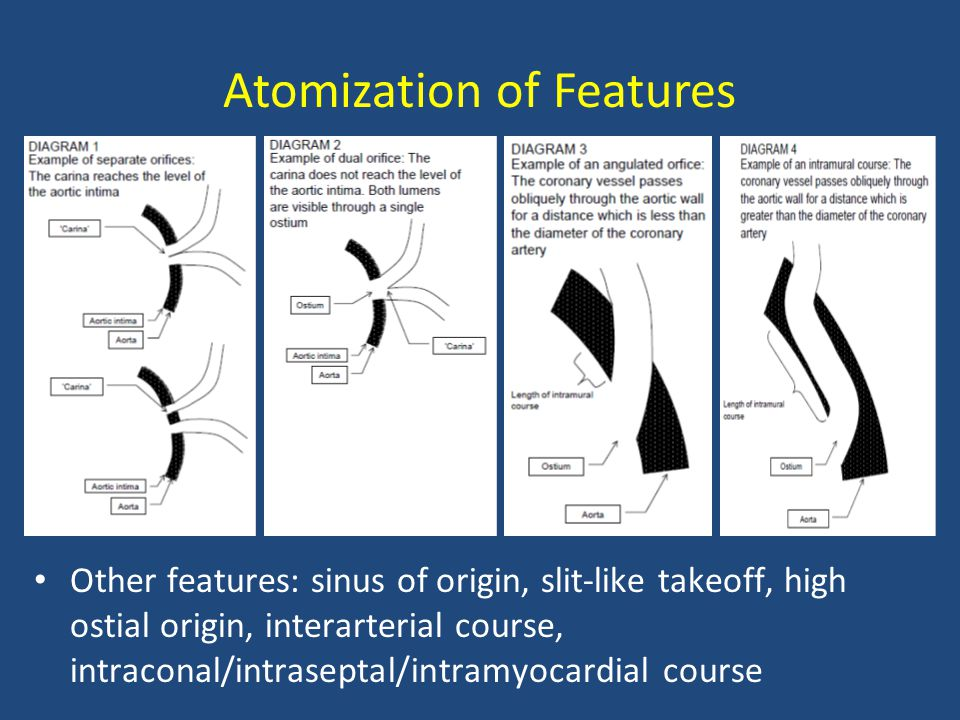 Atomization of Features Other features: sinus of origin, slit-like takeoff, high ostial origin, interarterial course, intraconal/intraseptal/intramyocardial course