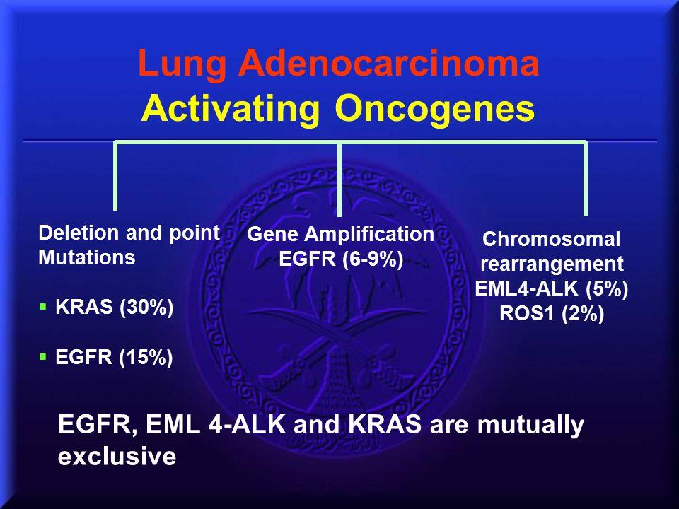 Lung Adenocarcinoma Activating Oncogenes Deletion and point Mutations  KRAS (30%)  EGFR (15%) Gene Amplification EGFR (6-9%) Chromosomal rearrangeme