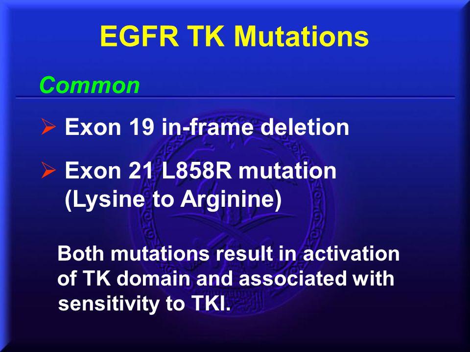 Common EGFR TK Mutations  Exon 19 in-frame deletion  Exon 21 L858R mutation (Lysine to Arginine) Both mutations result in activation of TK domain an