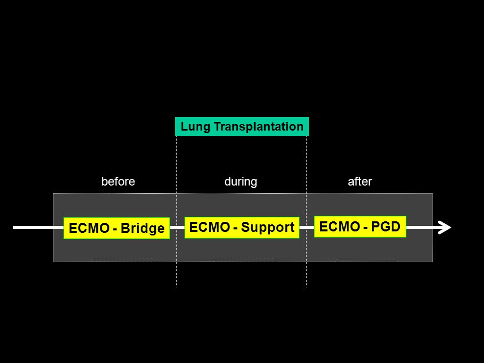 ECMO - Support ECMO - Bridge ECMO - PGD Hemodynamics Hypoxia - Hypercapnia Anticoagulation
