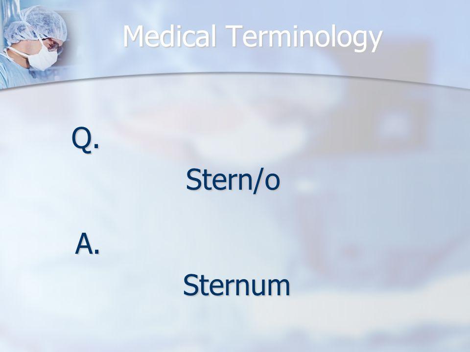 Q.Stern/o A.Sternum