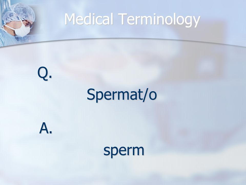 Medical Terminology Q.Spermat/o A.sperm