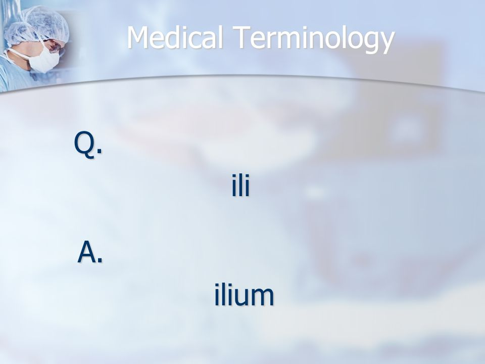 Medical Terminology Q.ili A.ilium
