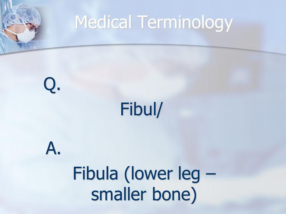 Medical Terminology Q.Fibul/ A. Fibula (lower leg – smaller bone)