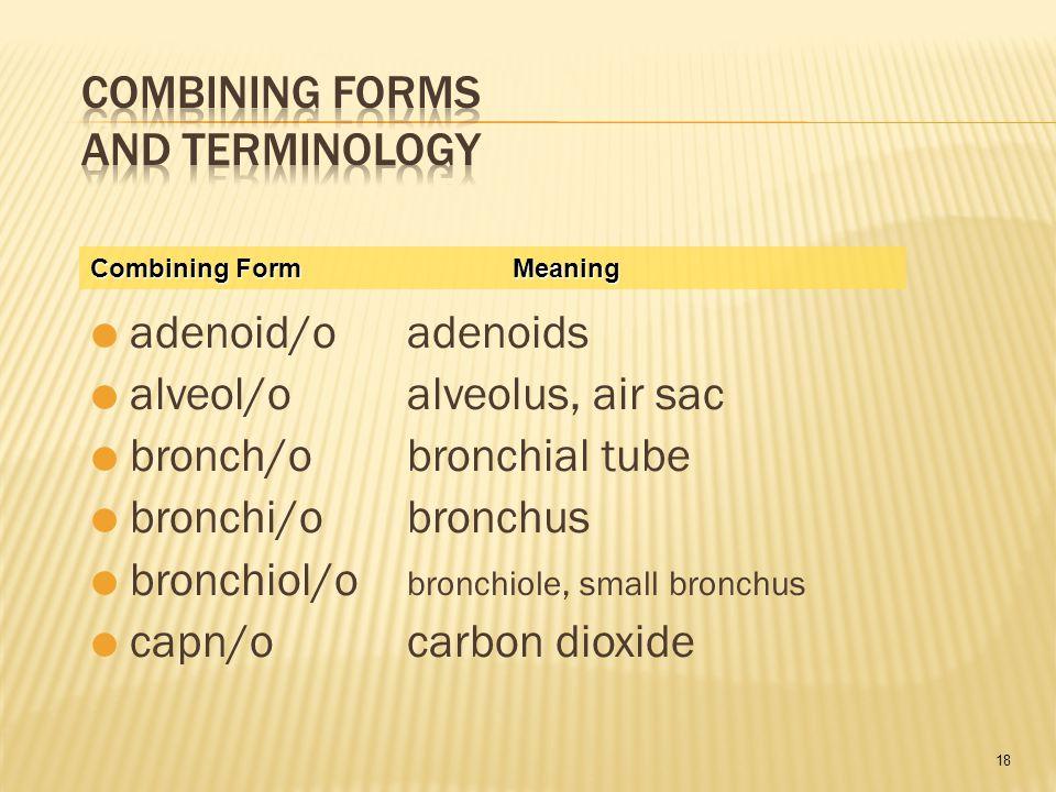 18  adenoid/oadenoids  alveol/oalveolus, air sac  bronch/obronchial tube  bronchi/obronchus  bronchiol/o bronchiole, small bronchus  capn/ocarbon dioxide Combining FormMeaning