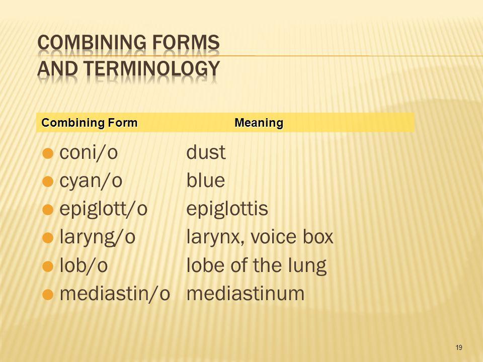 19  coni/odust  cyan/oblue  epiglott/oepiglottis  laryng/olarynx, voice box  lob/olobe of the lung  mediastin/omediastinum Combining FormMeaning
