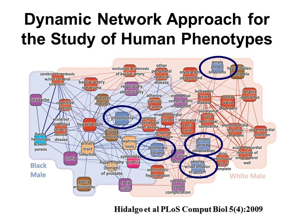Dynamic Network Approach for the Study of Human Phenotypes Hidalgo et al PLoS Comput Biol 5(4):2009