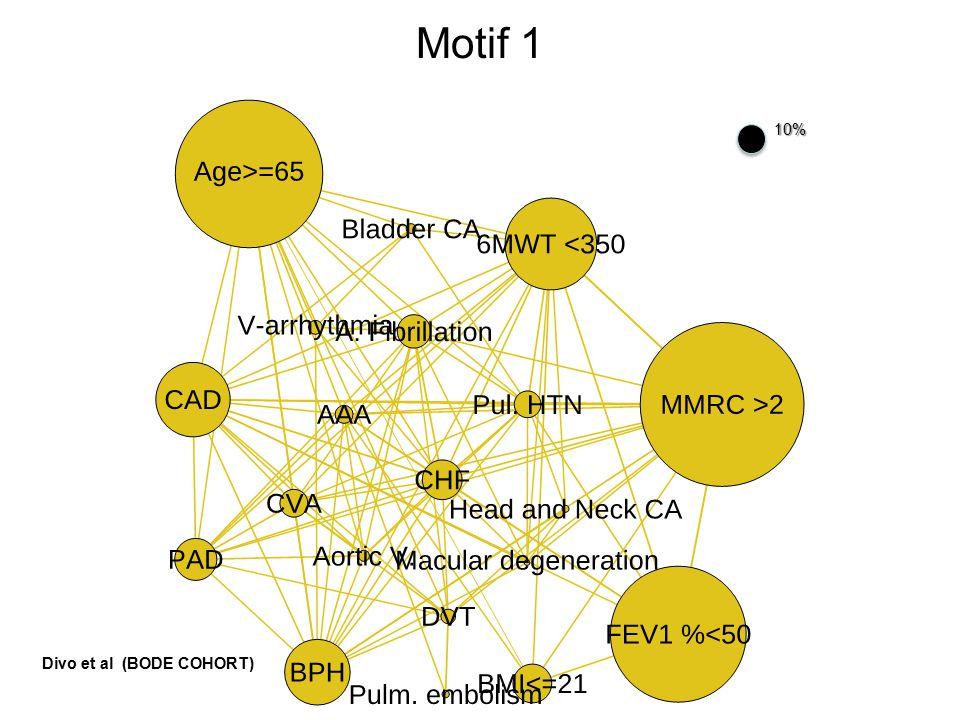 Motif 110% Divo et al (BODE COHORT)