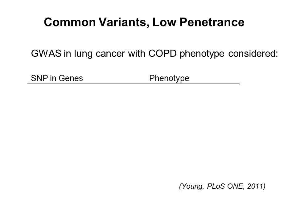 Common Variants, Low Penetrance GWAS in lung cancer with COPD phenotype considered: SNP in GenesPhenotype CHRNA3/5Lung cancer + COPD FAM13ALung cancer + COPD BAT3Lung cancer + COPD TERTLung cancer HHIPLung cancer + COPD ADAM19Lung cancer + COPD AGERCOPD CRPLung cancer (Young, PLoS ONE, 2011)