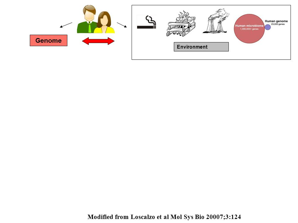 Genome Environment Modified from Loscalzo et al Mol Sys Bio 20007;3:124