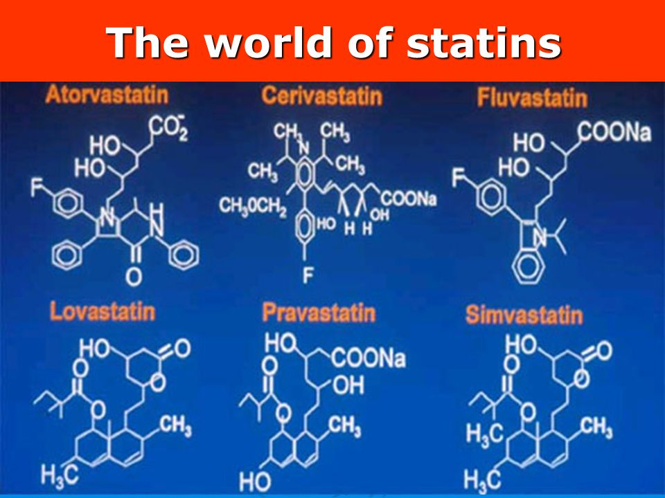 The world of statins