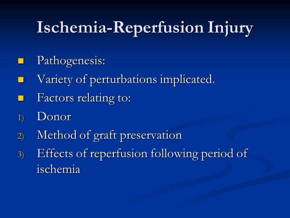 Ischemia-Reperfusion Injury Pathogenesis: Pathogenesis: Variety of perturbations implicated.
