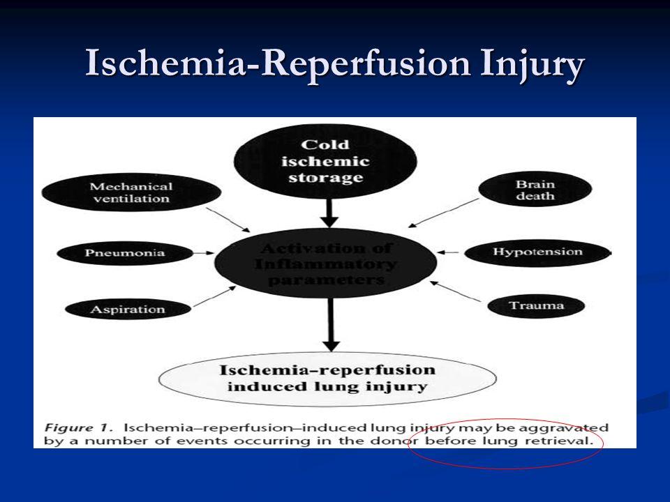 Ischemia-Reperfusion Injury