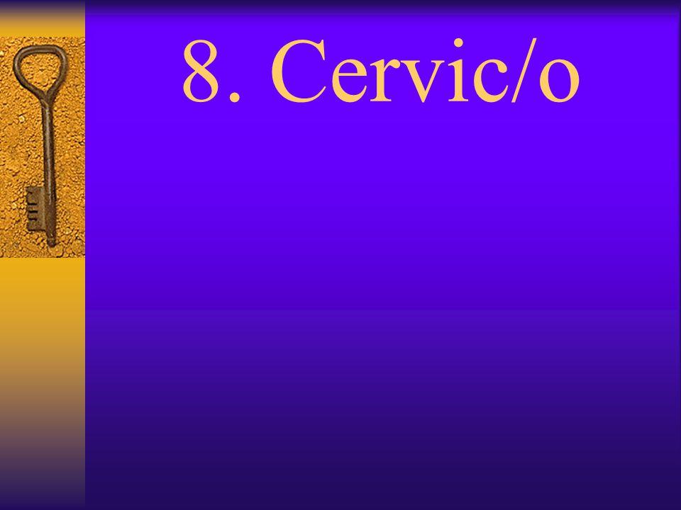 7. Cerebr/o