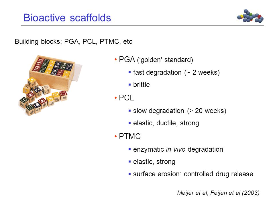 Bioactive scaffolds Building blocks: PGA, PCL, PTMC, etc PGA ('golden' standard)  fast degradation (~ 2 weeks)  brittle PCL  slow degradation (> 20 weeks)  elastic, ductile, strong PTMC  enzymatic in-vivo degradation  elastic, strong  surface erosion: controlled drug release Meijer et al, Feijen et al (2003)