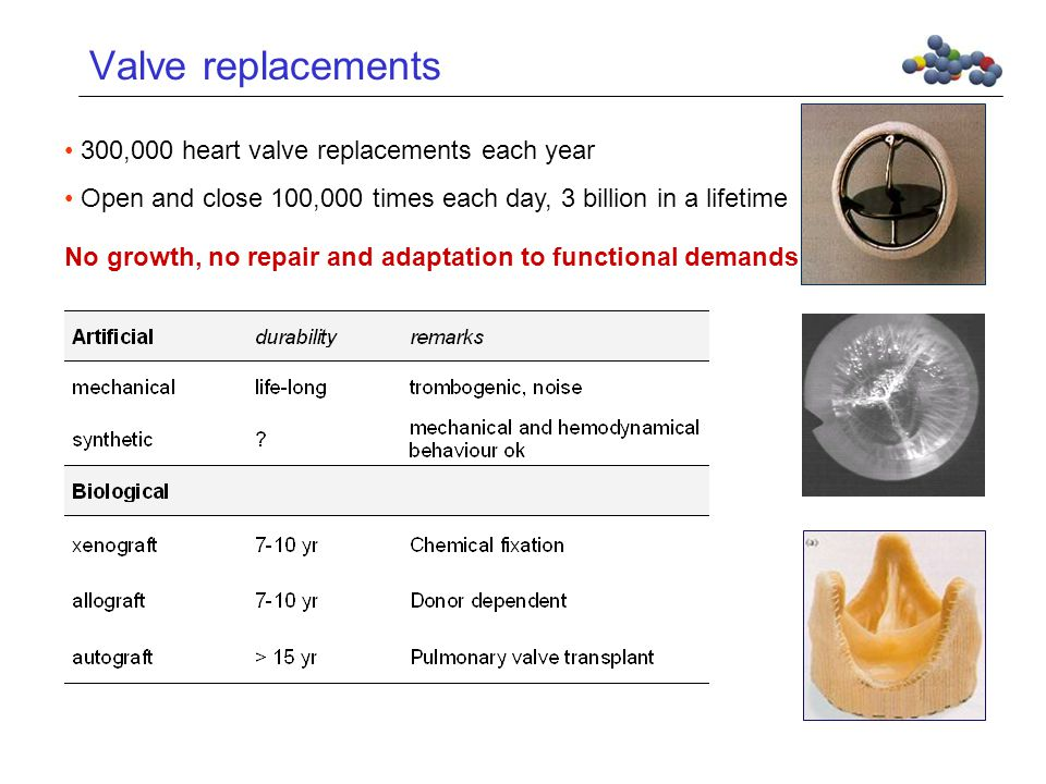 Valve replacements No growth, no repair and adaptation to functional demands 300,000 heart valve replacements each year Open and close 100,000 times each day, 3 billion in a lifetime